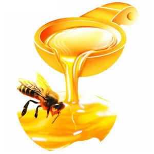 孕妇能喝蜂蜜吗?怀孕什么时候喝蜂蜜好