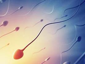 不孕不育检查有哪些(男方不育检查项目)
