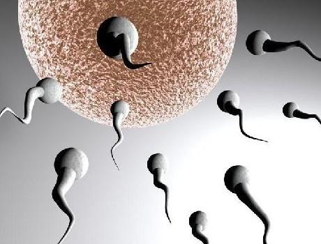 不孕不育是爱情和婚姻中的重伤之地