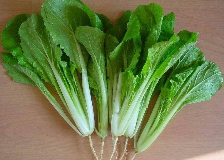 孕妇能吃青菜吗?怀孕吃蔬菜过多的四大害处