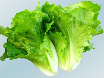 孕妇能吃生菜吗?怀孕可以常吃生菜