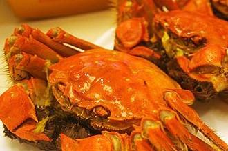 孕妇能吃螃蟹吗?怀孕应尽量不吃螃蟹