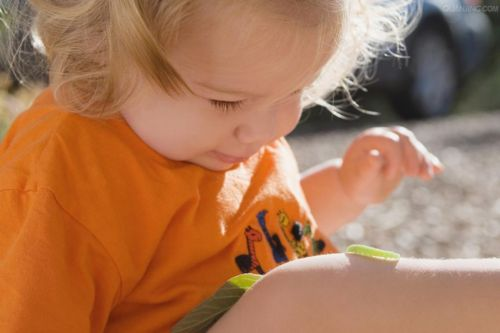 宝宝被虫子咬了怎么办?如何处理?