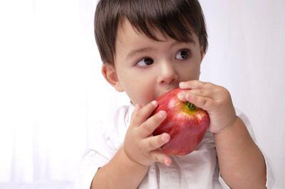 秋季宝宝饮食进补注意要点