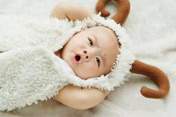 羊宝宝起什么名字好?600个适合羊宝宝的好名字