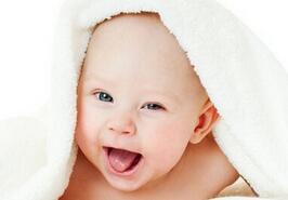 鸡宝宝起什么名字好?600个适合鸡宝宝的好名字