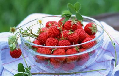 产后可以吃草莓吗?哺乳期间吃草莓有没有好处