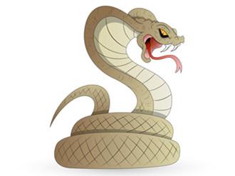 孕妇梦到大蟒蛇有什么预兆吗?孕妇梦见蟒蛇是什么意思