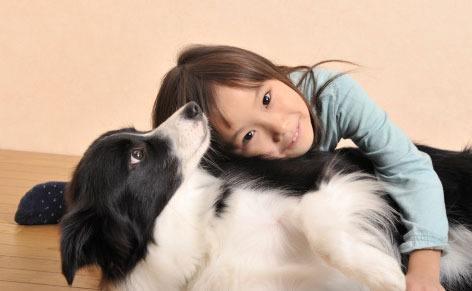 孩子怕猫怕狗怎么办?怎样帮助孩子克服怕猫狗的心理