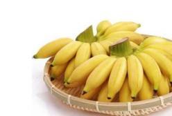 孕妇能吃米蕉吗?怀孕期间吃米蕉应注意什么