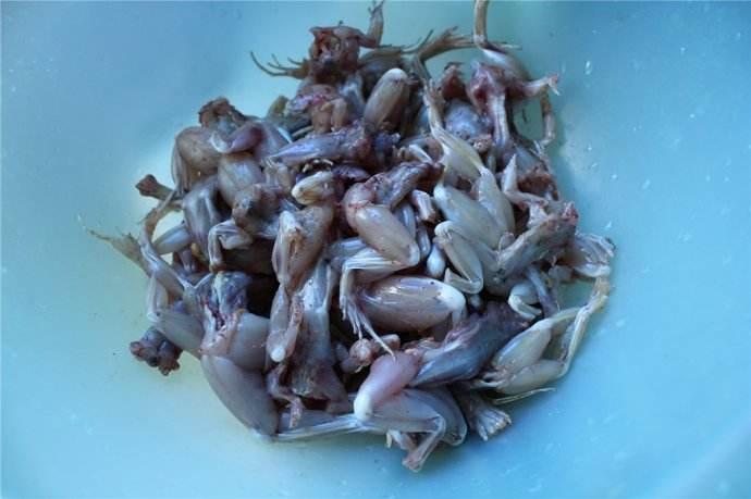 孕妇能吃青蛙肉吗?怀孕期间吃青蛙好不好