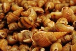 孕妇吃了带寄生虫的食物怎么办?寄生虫会传染给胎儿吗