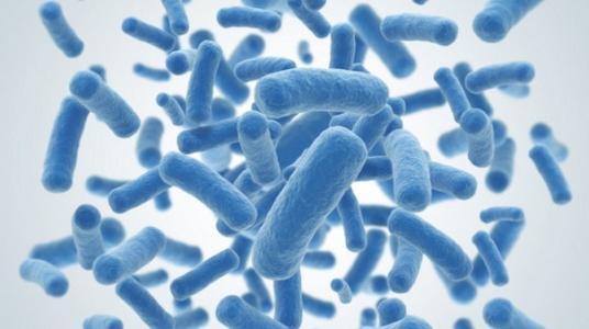 孩子常见的胃肠道疾病有哪些?