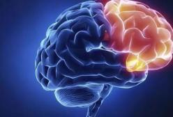 影响胎儿智力发育的6件事